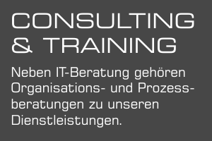 Consulting Training